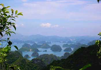 Trekking in Cat Ba National park, Kayaking in Cat Ba 1
